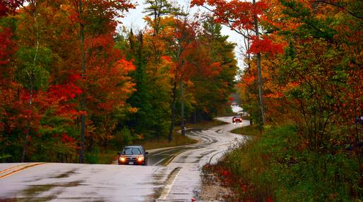 Route 42 N between Fish Creek and Newport, Door County - Photography by my wife, Hema Saran