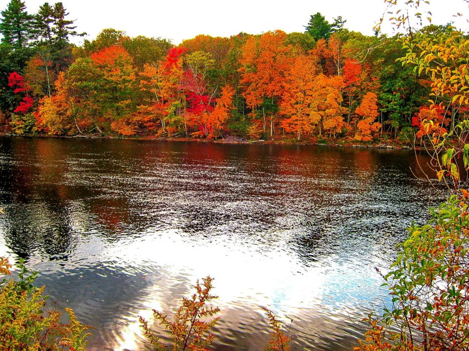 Farmington River, Collinsville, CT - If you do not have your kayak you can rent one in the nearby shop.