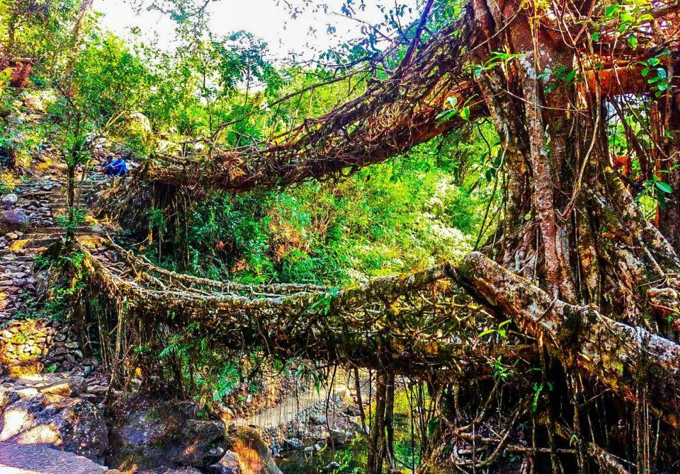 Umshiang double-decker bridge